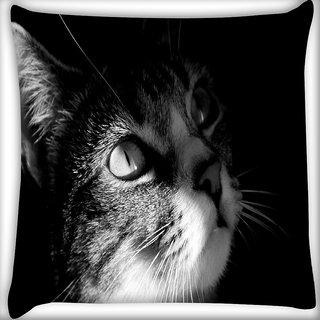 Snoogg Cute Kitty Digitally Printed Cushion Cover Pillow 16 x 16 Inch