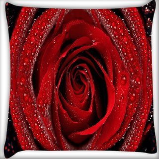 Snoogg Dew On Red Rose Digitally Printed Cushion Cover Pillow 16 x 16 Inch