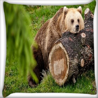 Snoogg Bear And The Wood Digitally Printed Cushion Cover Pillow 16 x 16 Inch