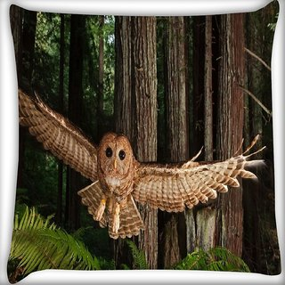 Snoogg Flying Owl Digitally Printed Cushion Cover Pillow 16 x 16 Inch