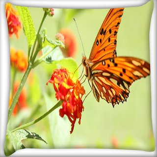 Snoogg Orange Butterfly Digitally Printed Cushion Cover Pillow 16 x 16 Inch