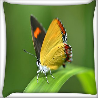 Snoogg Yellow Butterfly Digitally Printed Cushion Cover Pillow 16 x 16 Inch