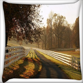 Snoogg Clear Pathway Digitally Printed Cushion Cover Pillow 16 x 16 Inch