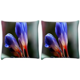 Snoogg Pack Of 2 Rare Blue Flower Digitally Printed Cushion Cover Pillow 8 X 8 Inch
