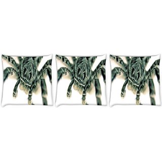Snoogg Pack Of 3 Black Spider Digitally Printed Cushion Cover Pillow 8 X 8 Inch