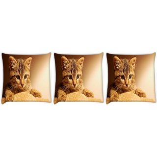 Snoogg Pack Of 3 Cute Kitty Digitally Printed Cushion Cover Pillow 8 X 8 Inch