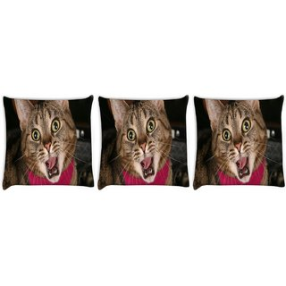 Snoogg Pack Of 3 Screaming Cat Digitally Printed Cushion Cover Pillow 8 X 8 Inch