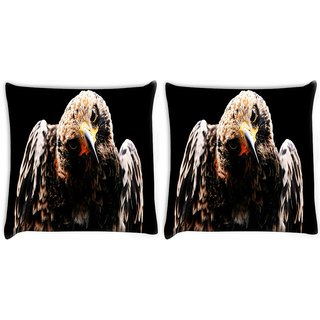 Snoogg Pack Of 2 Angry Eagle Digitally Printed Cushion Cover Pillow 8 X 8 Inch