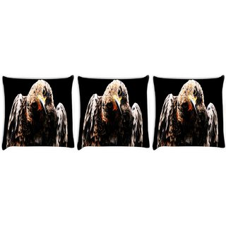 Snoogg Pack Of 3 Angry Eagle Digitally Printed Cushion Cover Pillow 8 X 8 Inch