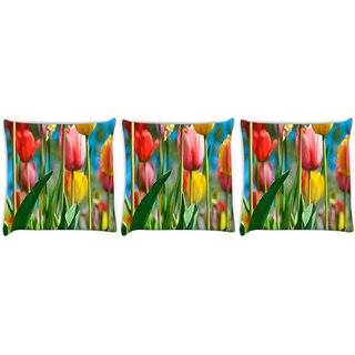 Snoogg Pack Of 3 Colorful Roses Digitally Printed Cushion Cover Pillow 8 X 8 Inch