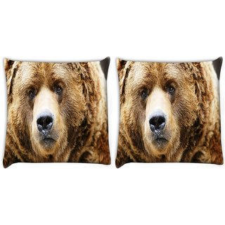 Snoogg Pack Of 2 Angry Bear Digitally Printed Cushion Cover Pillow 8 X 8 Inch