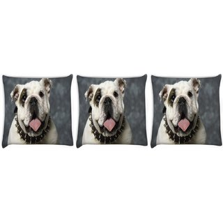 Snoogg Pack Of 3 English Bulldog Puppy Digitally Printed Cushion Cover Pillow 8 X 8 Inch