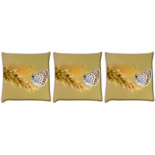 Snoogg Pack Of 3 Butterfly In Grass Digitally Printed Cushion Cover Pillow 24 X 24Inch