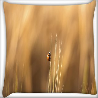 Snoogg Flying Beatel Digitally Printed Cushion Cover Pillow 24 X 24 Inch