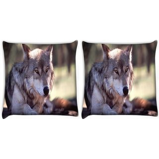 Snoogg Pack Of 2 Wolfy Dog Digitally Printed Cushion Cover Pillow 10 x 10 Inch