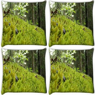 Snoogg Pack Of 4 Clean Garden Digitally Printed Cushion Cover Pillow 10 x 10 Inch