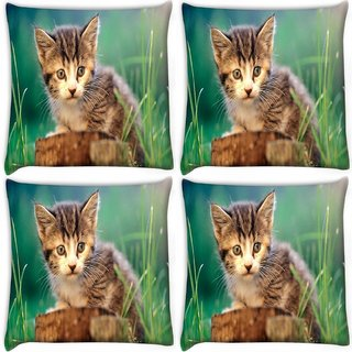 Snoogg Pack Of 4 Poor Kitty Digitally Printed Cushion Cover Pillow 10 x 10 Inch