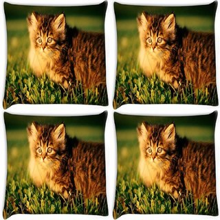 Snoogg Pack Of 4 Persian Cat Digitally Printed Cushion Cover Pillow 10 x 10 Inch