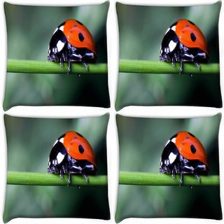 Snoogg Pack Of 4 Red Beatel In Green Grass Digitally Printed Cushion Cover Pillow 10 x 10 Inch
