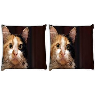 Snoogg Pack Of 2 Cute Kitty Digitally Printed Cushion Cover Pillow 10 x 10 Inch