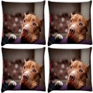 Snoogg Pack Of 4 Dog Waiting Digitally Printed Cushion Cover Pillow 10 x 10 Inch