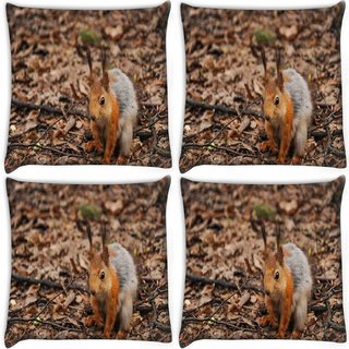 Snoogg Pack Of 4 Squarril Sitting Digitally Printed Cushion Cover Pillow 10 x 10 Inch