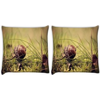 Snoogg Pack Of 2 Small Fruitnut Digitally Printed Cushion Cover Pillow 10 x 10 Inch