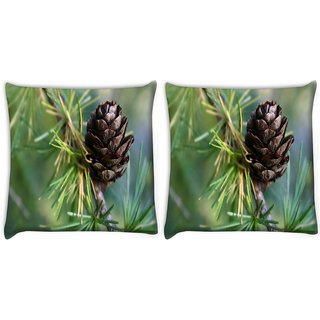 Snoogg Pack Of 2 Wooden Flower Digitally Printed Cushion Cover Pillow 10 x 10 Inch