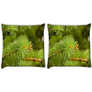 Snoogg Pack Of 2 Water Drops In Tree Digitally Printed Cushion Cover Pillow 10 x 10 Inch