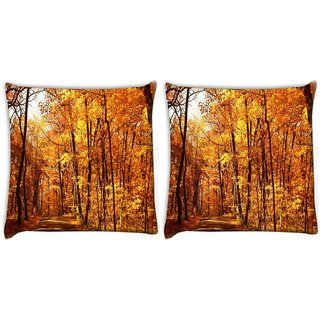Snoogg Pack Of 2 Day Forest Digitally Printed Cushion Cover Pillow 10 x 10 Inch