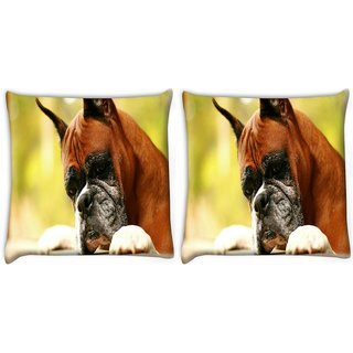Snoogg Pack Of 2 Dog Waiting For Someone Digitally Printed Cushion Cover Pillow 10 x 10 Inch