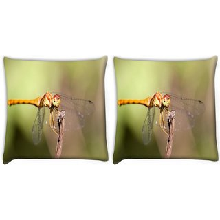 Snoogg Pack Of 2 Orange Dragonfly Digitally Printed Cushion Cover Pillow 10 x 10 Inch