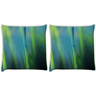 Snoogg Pack Of 2 Blue Dragonfly Digitally Printed Cushion Cover Pillow 10 x 10 Inch