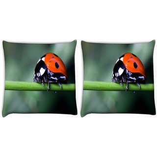 Snoogg Pack Of 2 Red Beatel In Green Grass Digitally Printed Cushion Cover Pillow 10 x 10 Inch