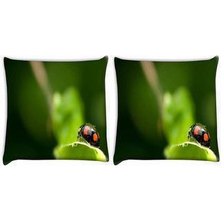 Snoogg Pack Of 2 Black Beatel Digitally Printed Cushion Cover Pillow 10 x 10 Inch