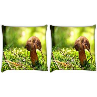 Snoogg Pack Of 2 Mushroom Digitally Printed Cushion Cover Pillow 10 x 10 Inch