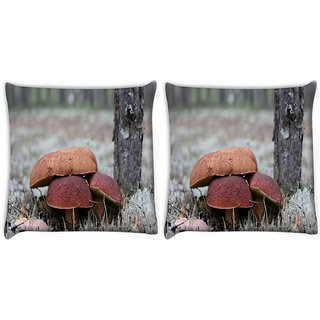 Snoogg Pack Of 2 Bread Mushrrom Digitally Printed Cushion Cover Pillow 10 x 10 Inch