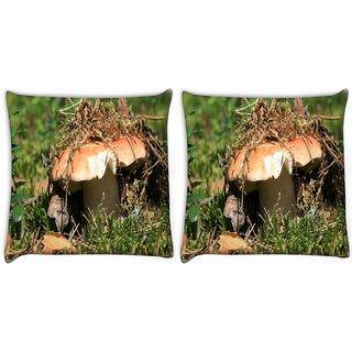 Snoogg Pack Of 2 Broken Mushroom Digitally Printed Cushion Cover Pillow 10 x 10 Inch