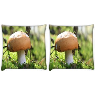Snoogg Pack Of 2 Yummy Mushroom Digitally Printed Cushion Cover Pillow 10 x 10 Inch