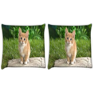Snoogg Pack Of 2 Cute Cat Digitally Printed Cushion Cover Pillow 10 x 10 Inch