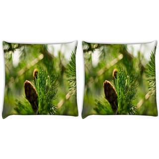 Snoogg Small Fruit Digitally Printed Cushion Cover Pillow 22 x 22 Inch