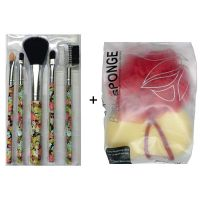 Edee Combo of Imported Make Up Brush Set Of 5  Silky Mesh Loofah Multicolour