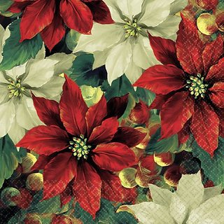 beverage napkins regal poinsettia
