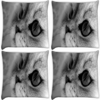 Snoogg Pack Of 4 Garcya Cat Eye Digitally Printed Cushion Cover Pillow 12 x 12 Inch