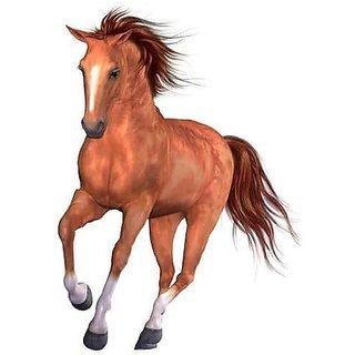 Wallmonkeys Beautiful Horse - 24