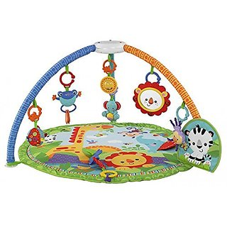 Fisher-Price Rainforest Friends Musical Gym (Discontinued by Manufacturer)