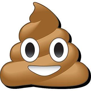 Aquarius Emoji Poop Funky Chunky Magnet
