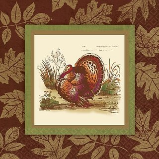 Thanksgiving Sophistication Banquet Napkins 16 ct Thanksgiving Party Supply