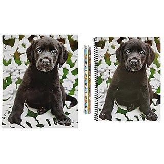 Back to School - Black Lab Puppies - Four Piece School Supply Bundle: One Glossy 2-Pocket Portfolio Folder, One 80 Sheet