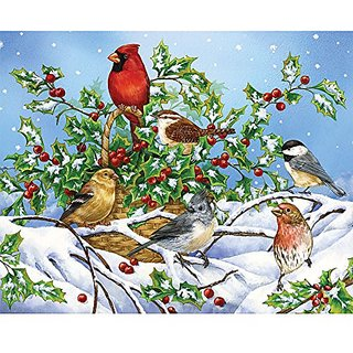 Bits and Pieces - 1000 Piece Jigsaw Puzzle - Holly Birds - Birds in the Snow w/ Cardinal Puzzle - by Artist Jane Maday